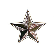 Cheungs Rattan 26'' Star Wall Art in Multicolor