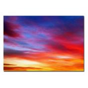 "Trademark Art ""Veils"" Canvas Art by CATeyes, 22x32"