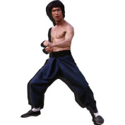 Aquarius Bruce Lee Stance Chunky Magnet