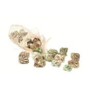 Dekorasyon Gifts & Decor Turbo Shell in Sinamay Bag