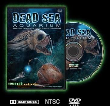 Twisted Ambience DSA Dead Sea Aquarium Ambient Video Wallpaper