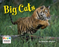 Big Cats (Engage Literacy
