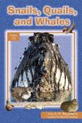 Snails, Quails, and Whales