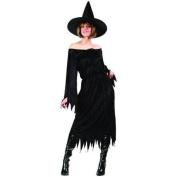 RG Costumes 81333 Velvet Witch Costume