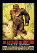 Buy Enlarge 0-587-01399-0C12X18 Los Animales del Universo- Canvas Size C12X18
