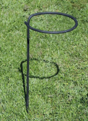 Achla Designs Planters & Pottery 70cm . Black Wrought Iron Flower Pot Stake SFT-02