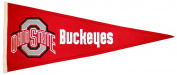Winning Streak Ohio State Buckeyes NCAA Traditions Pennant