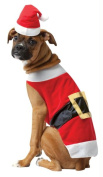 Costumes For All Occasions GC5027LG Pet Costume Santa
