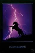 Hot Stuff Enterprise 2719-24x36-AN Lightning Horse Poster
