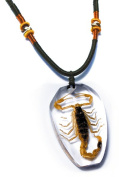 Ed Speldy East PSB1101 Real Bug Necklace-Scorpion