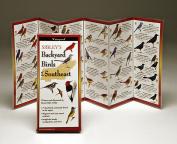 Sibleyapos;s Backyard Birds Florida Book