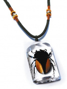 Ed Speldy East PSB1106 Real Bug Necklace-Stag beetle