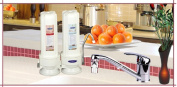 Crystal Quest CQE-CT-00139 Countertop Replaceable Double Arsenic Water filter System