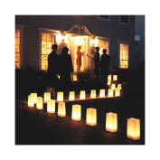 JH Specialties 53136 12- Count Luminaria Kit- Traditional White