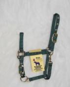 Hamilton Halter Company 3 4 Adj Chin Halter W Snap Hunter Green Pony - 3DAS PODG