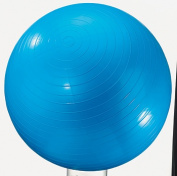 DICK MARTIN SPORTS MASGYM24 EXERCISE BALL 60cm BLUE