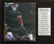 C & I Collectables 1215JORDANST NBA Michael Jordan Chicago Bulls Stat Plaque