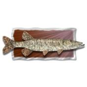 All My Walls FISH00004 Freshwater Fish Metal Wall Art