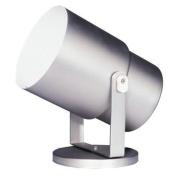 Dainolite DXL15-WH 1-Light Wall Spot or Floor Pod - White