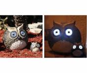 Smart Solar STI3563WRM2 Solar Owl Accent Set