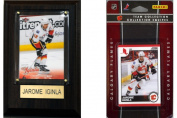 C & I Collectables 10FLAMESFP NHL Calgary Flames Fan Pack