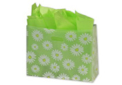 Bags & Bows by Deluxe 268-160612-DSYC Daisy Die Cut Clear Frosted Shoppers - Case of 100