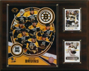 C & I Collectables 1215BRUINS11 NHL 12 X 15 Boston Bruins 2011 Team Plaque