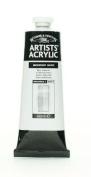 Winsor & Newton Professional Acrylic Colour Paint, 60ml Tube, Iridescent White
