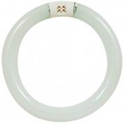 Feit Compact Fluorescent Circular Light Bulb FC30