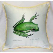 Betsy Drake HJ040 Green Treefrog Art Only Pillow 18x18