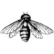 Magenta 486261 Magenta Cling Stamps-Bee