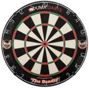Bandit Bristle Dartboard