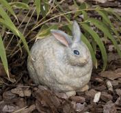 Evergreen Enterprises, Inc Portly Bunny Statue