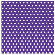 Amscan 220994 Purple with Polka Dot Jumbo Gift Wrap