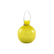 Achla Designs Goblet Rooting Vase, Yellow