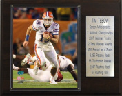 C & I Collectables 1215TEBOWST NCAA Football Tim Tebow Florida Gators Career Stat Plaque