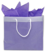 Bags & Bows by Deluxe 268-120410-EURO Clear Frosted High Density Euro Shoppers - Case of 100