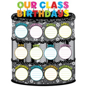 Creative Teaching Press Our Class Birthdays Poster Chart