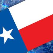 Texas Flag Pool Emblem 150cm 67B00-00073_Texas