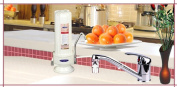Crystal Quest CQE-CT-00125 Countertop Replaceable Single Ceramic Water filter System