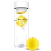 AdNArt Glass Water Bottle with Fruit Iceball Maker
