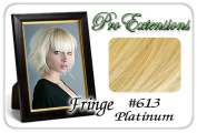 Brybelly Holdings PRFR-613 No. 613 Platinum Pro Fringe Clip In Bangs