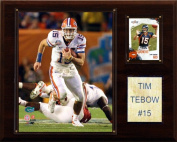 C & I Collectables 1215TEBOWC NCAA Football Tim Tebow Florida Gators Player Plaque