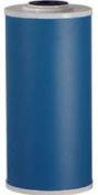 Pentek Water Filter Systems GAC-BB 25cm . x 10cm - 1.3cm . Drinking Water Filter PENTEK-GAC-BB