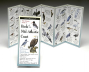 Steven M. Lewers & Associates LEWERSBMA143 Folding Guide Birds Mid Atlantic Coast