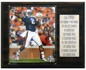 C & I Collectables 1215NEWTONST NCAA Football Cam Newton Auburn Tigers Career Stat Plaque