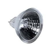 Northern International GL22650-2 2 Count 50 Watt 12V MR16 Bulbs