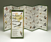 Sibleyapos;s Backyard Birds Eastern Texas Book