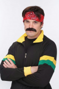 Costumes For All Occasions Pm531364 Mustache The Walrus Brown