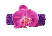 """PURPLE ORCHID Jewel Gerbera Daisy Flower Crochet Headband Gerber for Girls/ Child/ Baby Toddler apparel head hair band bow bows girl soft infant youth accessory by """"BubuBibi"""""""